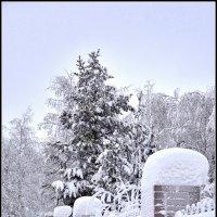 Зимняя ограда :: Василий Хорошев