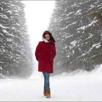 Зимняя прогулка :: Инна Кузнецова