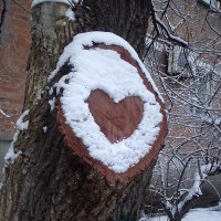 Любви погода не помеха :: Ульяна Назарова
