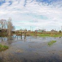 пруд, выкопанный в ручную. с. Русское :: Вера Азсоль