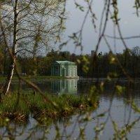 Вид на павильон Венеры. :: Татьяна Ямкова