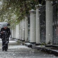 шёл тёплый снег :: Хмурый *