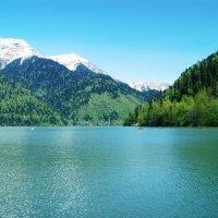 Озеро Рица- легендарное место в Абхазии :: Татьяна Гордеева