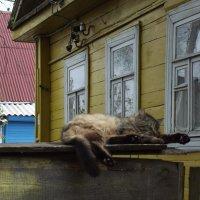 после ночной смены :: Сергей Кочнев