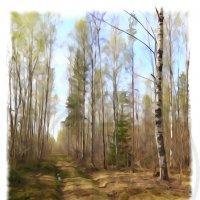 весенний лес :: Михаил Киселев