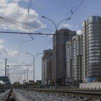Новый микрорайон :: Алексей Селиванов