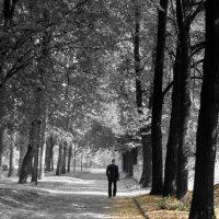 Краски одиночества :: Nikita Smirnov