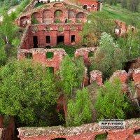Аракчеевские казармы. Развалины :: Павел Москалёв