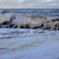 Желтое море :: Катя Медведева