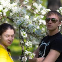 Весна :: Василий Гущин