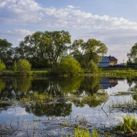 Прудик в деревне. :: Igor Yakovlev