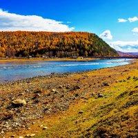Река Зун-Мурино :: Анатолий Иргл