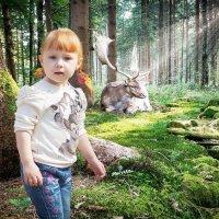 Сказочный лес :: Леонид Мишанин