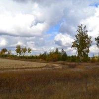 Алтайский край природа осенью :: Vlad Pchelkin