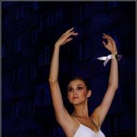 Белый Лебедь---10 :: Владимир Холодный