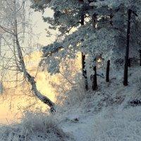 Зимним днем :: Лена Петрова