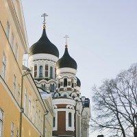 Tallinn :: Дарина Михеева