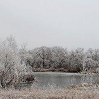 Первый хрупкий лед. :: Маргарита ( Марта ) Дрожжина