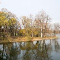 Ноябрьское солнце. Останкинский парк, Москва :: Николай В