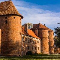 Замок Frombork :: Игорь Вишняков