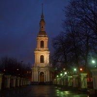 Колокольня Никольского собора :: Наталья Левина