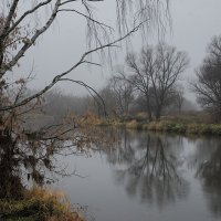 после листопада :: sergej-smv
