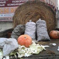 *** :: Валентина Береснева
