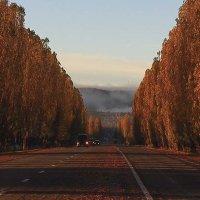 Утренние дороги Адыгеи :: Бронислав Богачевский