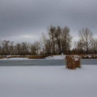 Вот и зима. :: Виктор Гришенков