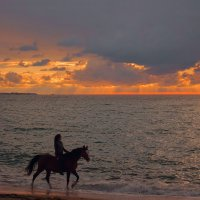 Прогулка у моря :: Виктор Мороз