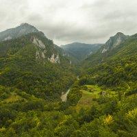 Каньон реки Тара :: Gennadiy Karasev
