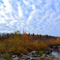 Осенние облака :: Ольга