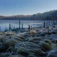 Круглое озеро в ноябре :: Вера