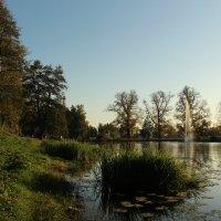 В окрестностях Николо-Угрешского монастыря :: Александра