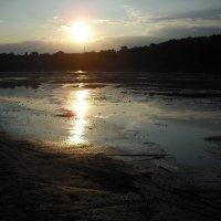 Закат над обмелевшей Десной :: Денис Бугров