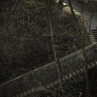 Одиночество :: Наталья Королева