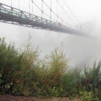 Туман над рекой :: Любовь Потеряхина