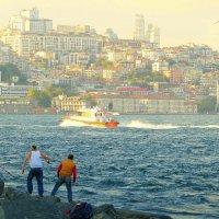 Стамбул. Рыбалка на Босфоре. :: Игорь