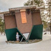 Перевернутый дом в селе Манжерок :: Виктория Устюгова