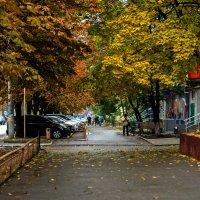 После дождя :: Екатерина Исаенко