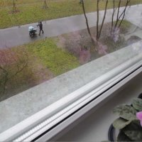 А за моим окном дожди... :: galina bronnikova