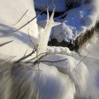 Забавы матушки зимы. :: Мила Бовкун
