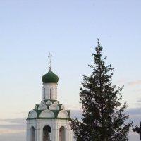 Белый город. :: Надежда Савельева