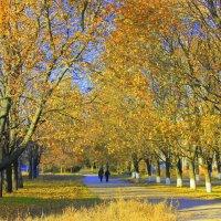 Осень, осень, ну давай у листьев спросим, где он май, вечный май? :: Валентина ツ ღ✿ღ