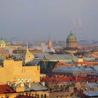 Крыши :: Наталья Левина