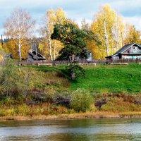 река Юг, причальная сосна :: ВладиМер