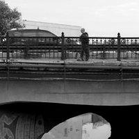 Мостовое хозяйство. Контроль яйценоскости. :: Ирина Сивовол