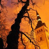 Такой Таллинн ночью :: Виктор Истомин