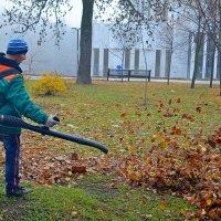 Дуем на листья :: Ростислав