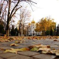 Осень :: Serega Денисенко